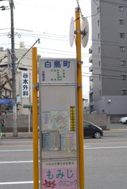 白島バス停の画像1