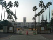大阪市立大学 杉本