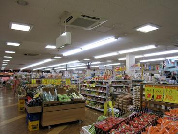 アカシア西田辺店の画像3