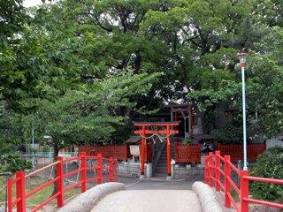 桃ヶ池公園の画像3