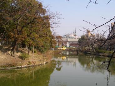 桃ヶ池公園の画像4