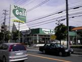 Victoria Golf 市川インター店
