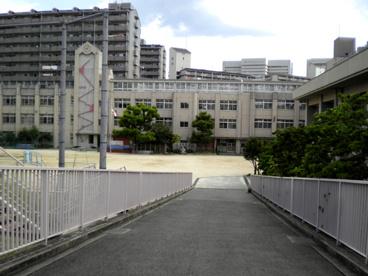 大阪市立 金塚小学校の画像2