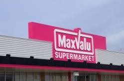 マックスバリュー大池店の画像1