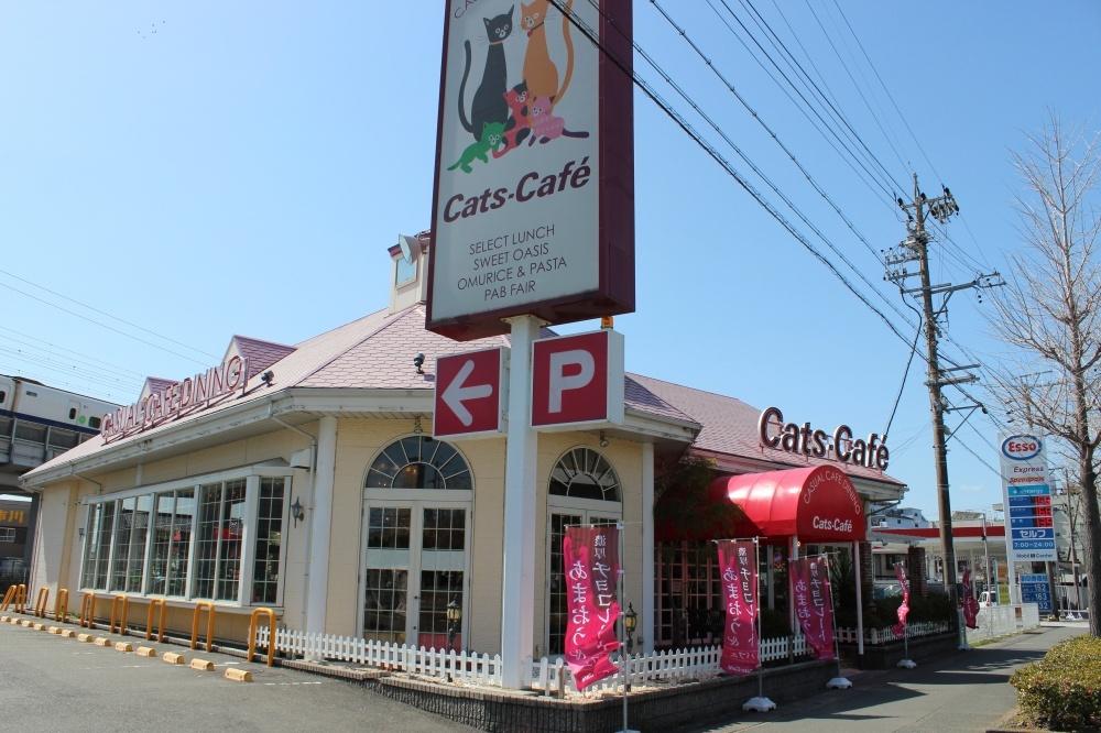 キャッツカフェ 浜松南店の画像
