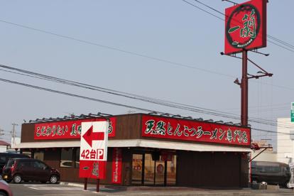 一蘭 浜松店の画像1