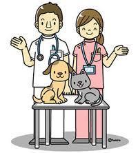 三田獣医科の画像1