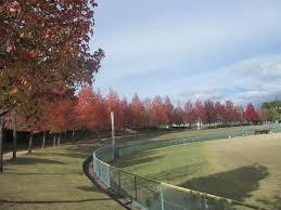 三田谷公園の画像1