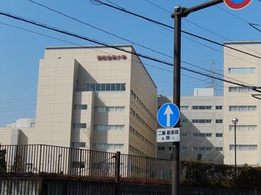 昭和音楽大学南校舎 新百合ヶ丘の画像1