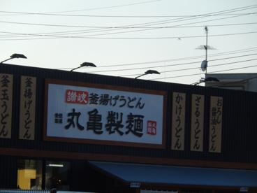 丸亀製麺 稲田堤の画像1