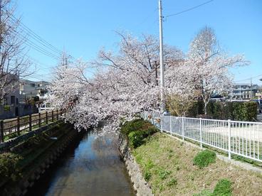 中野島二ヵ領用水の画像1