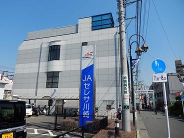 JAセレサ川崎菅支店の画像1