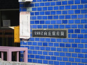 文京区立向丘保育園の画像2