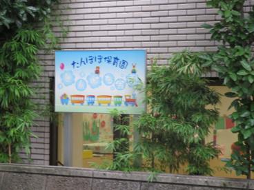 たんぽぽ第三分園の画像2