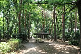 駒場緑地の画像1