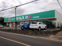 ドラッグストアセイムズ所沢北野店