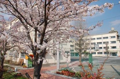 中野区第二中学校の画像1