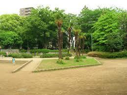 常盤公園の画像1