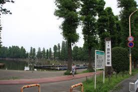 県立別所沼公園の画像1