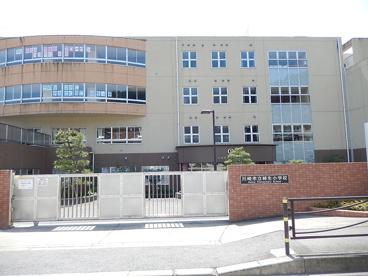 川崎市立 柿生小学校の画像1