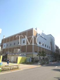 荒川区立 汐入小学校の画像2