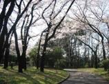 北区中央公園