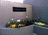 広島市立 井口小学校