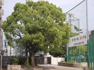 吉島中学校の画像1