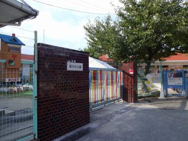 国分幼稚園の画像1