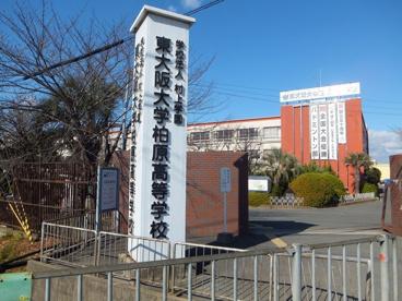 東大阪大学柏原高等学校の画像1
