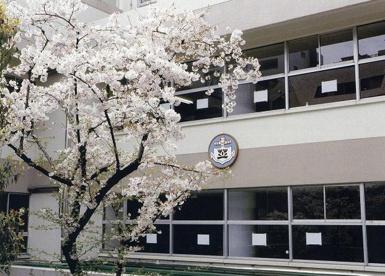 港区立 芝小学校の画像1