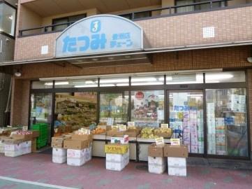 たつみチェーン豊洲店の画像