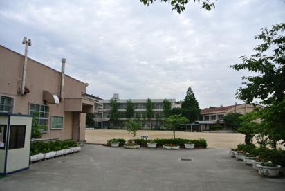 長洲小学校の画像1