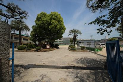 広島市立大芝小学校の画像1
