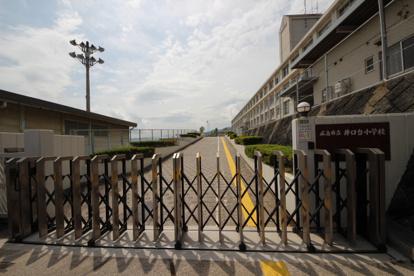井口台小学校の画像1