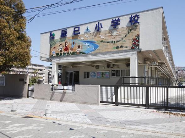 江東区立 辰巳小学校の画像