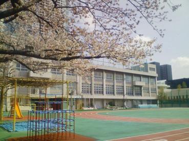 中央区立 豊海小学校の画像1