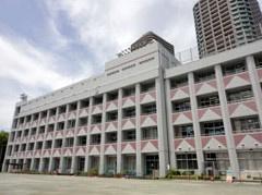 中央区立 佃島小学校の画像2