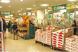 文化堂 月島店の画像3