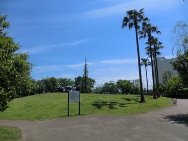 豊海運動公園の画像4