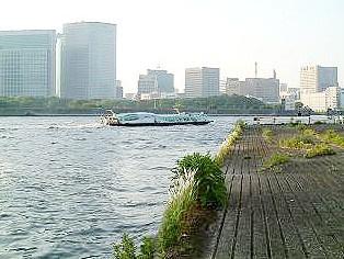 豊海運動公園の画像5