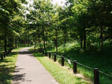 柏の宮公園の画像1