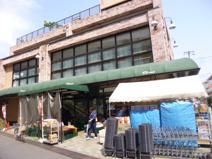 ワイズマート原木中山店
