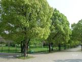 千里中央公園