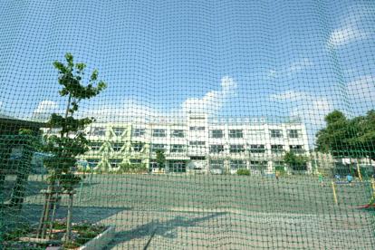 品川区立 小山台小学校の画像4