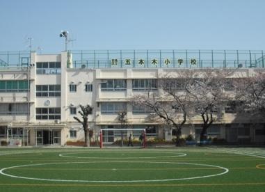 目黒区立 五本木小学校の画像1