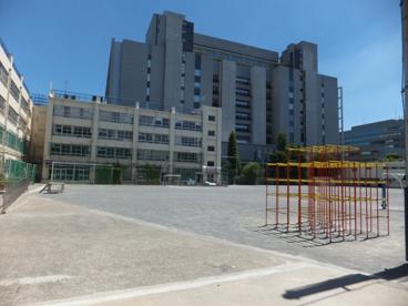江東区立南陽小学校の画像2