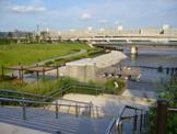 瑞光橋公園