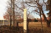 武蔵の森公園