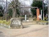 井草の森公園